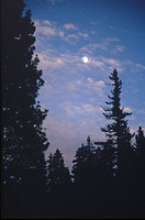 The Moon, over Oregon, at dawn.