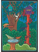 Many different birds in bird houses and bird baths (thumbnail)