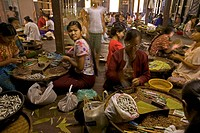 Women and girls in cigar factory, Bago, Myanmar