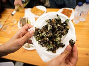 Seafood Specialties during the Feria del Marisco in O Grove, Galicia, Spain