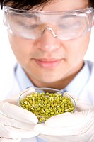 Male scientist holding petri dish full of beans