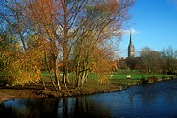 Autumn view of Salisbury Cathedral and River Avon from the Water Meadows
