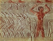 Egypt - Cairo - Ancient Memphis (UNESCO World Heritage List, 1979). Saqqara. Necropolis. Private funerary mastaba of Mereruka, 6th Dynasty, 2349 BC. P...