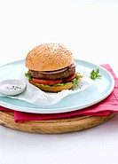 Hamburger with tomato, lettuce and red onion