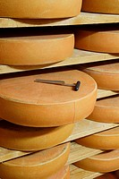 Bergkäse cheese on wooden shelves with cheese iron