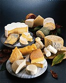 Food. Still life - Cheeses