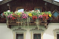 Austria - Tyrol (Tirol) - Neustift