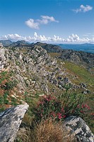 Zimbabwe - Chimanimani National Park