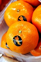 Tangerines at La Boqueria market, Barcelona. Catalonia, Spain
