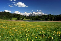 Germany, Upper Bavaria, Werdenfelser Land, spring_meadow, Gerold_Lake, Karwendel_mountains,
