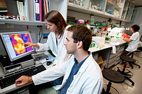 Department of Brain Ischemia and Neurodegeneration, IIBB - Institute for Biomedical Research of Barcelona, CSIC - Consejo Superior de Investigacion Ci...