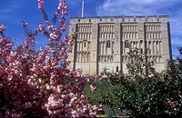Springtime view of Norwich Castle dating from 1160