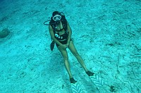 Netherlands Antilles, Bonaire, a diver off the coast at Captain Dons Habitat