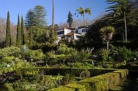 Palheiro Gardens, Madeira, Portugal