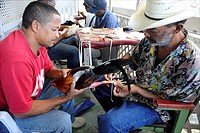 Sint Maarten, sharpening the spurs of a rooster before the fight