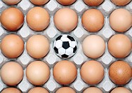 Studio shot of small football among eggs on egg tray, Grahamstown, Eastern Cape Province, South Africa