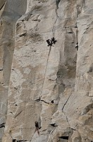 Rock Climber, El Capitan, Yosemite National Park,