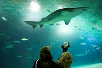 Spain. Valencia. City of the Arts and the Sciences. L´Oceanografic is the largest oceanographic aquarium in Europe with 110,000 square meters and 42 m...