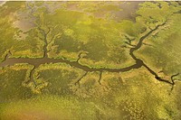 Aerial view of tributary on Bald Head Island, North Carolina