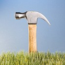 Studio shot of hammer with wooden handle placed behind grass