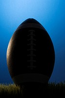 Studio shot of silhouette football resting in grass