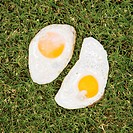 Two fried eggs on grass