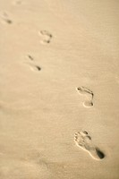 Scenic sandy coastline with footprints