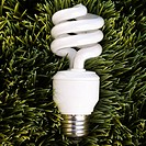 Studio shot of energy saving light bulb laying in grass
