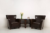 Two brown armchairs and table with daffofils still life