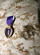 A soldier wears his Purple Heart on his digital camouflage