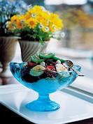 flowerpots, Interior, flowerpot, decorations, Decoration, flower, Interior decoration