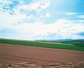 farm field, sky, landscape, scenery, cloud, field