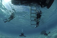 Divers under boat's ladder, Grand Cayman Island, Cayman Islands, Caribbean