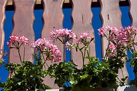 Outdoors, flora, belvedere, balcony, balcony plant, flowers, geranium (thumbnail)