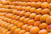 backgrounds, aliment, background, apricots, apricot, alfred