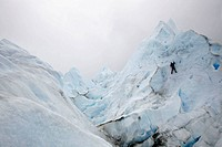 People trekking on Perito Moreno glacier  Los Glaciares National Park, El Calafate area, Santa Cruz province  Patagonia  Argentina
