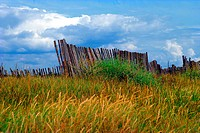 blue, burkhard, day, fence, grass country, green