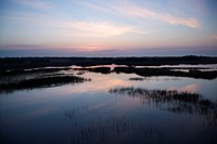 Sky reflecting in water in marsh area on Bald Head Island, North Carolina
