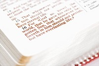 Selective focus of verses in open Holy Bible