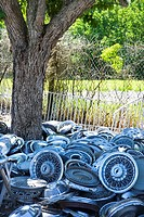 Pile of old hubcaps on the ground next to tree