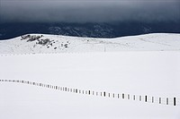 Snow covered field with barbed wire fence in rural mountainous Colorado