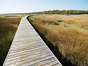 Wooden boardwalk stretching over marsh at Bald Head Island, North Carolina
