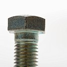 Close up of bolt screw on white background