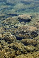 Rocks on ocean bottom seen through clear, rippled water in Maui, Hawaii, USA