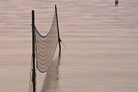 Day, Fishing Net, Lake