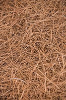 Close_Up, Dry, Full Frame, Hay, Haystack