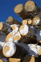 Blue, Clear Sky, Close_Up, Day, Firewood