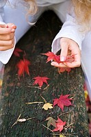 Young woman with autumn leaves (thumbnail)