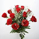 Bouquet of long-stemmed red roses with baby's breath against white background (thumbnail)