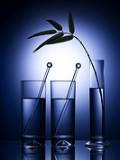 Kitchen item, vase, cup, glass cup, leaf, glass vase (thumbnail)